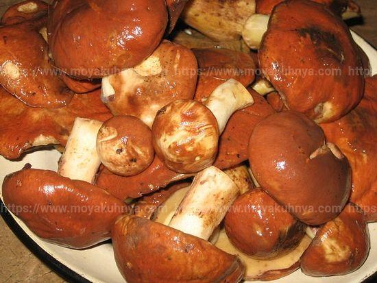 как правильно обработать грибы маслята почистить