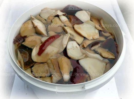можно ли солить грибы в пластиковой таре